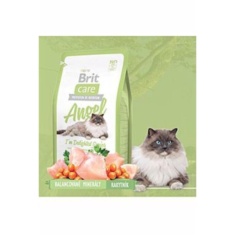 Brit Care Grain-free Adult Salmon & Potato беззерновой сухой корм для собак (с лососем и картофелем)
