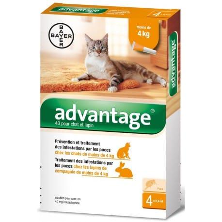 Advantage 40 10% 4x0,4ml pro kočky do 4kg