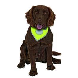 Šátek na krk reflex Safety Dog 24-30cm Žlutý KAR 1ks