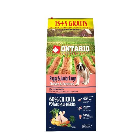 ONTARIO Dog Puppy Junior Large Chicken & Potatoes 15kg