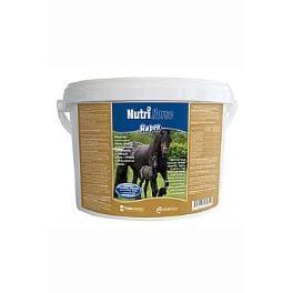 Biofaktory Nutri Horse Repro pro koně plv 3kg