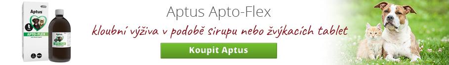 aptus-blog.jpg