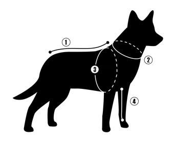 Změřte svého psa správně.