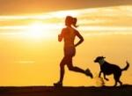Sportování se psem