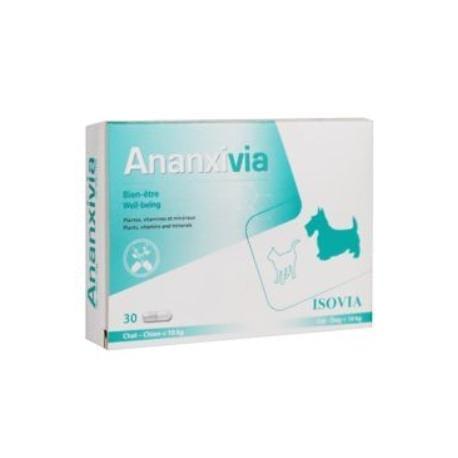 Ananxivia /Isovia kočka 30cps