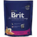Brit Premium Cat Adult Salmon 800 NEW