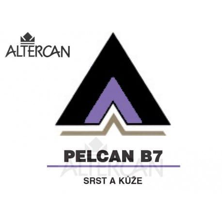 Pelcan B7