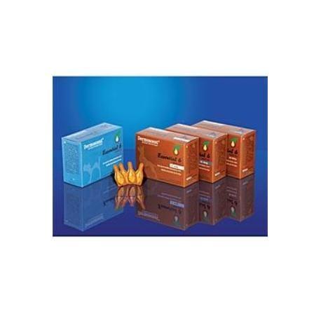 Dermoscent Essential 6 spot-on pes 4x2,4ml 20-40kg