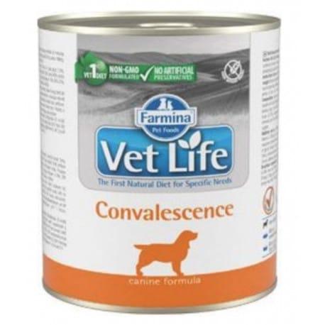 Vet Life Natural Dog konz. Convalescence 300g