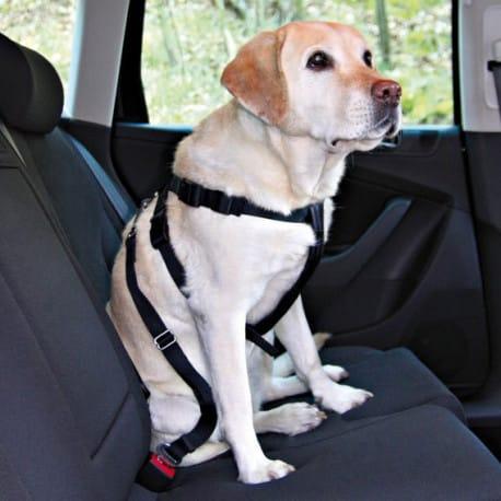 Nobby bezpečnostní postroj L pro psa do auta