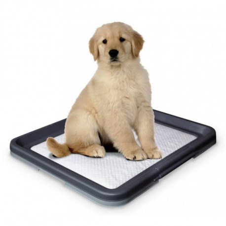 Nobby Doggy Trainer Large toaleta 62,5 x 48 x 3,8 cm