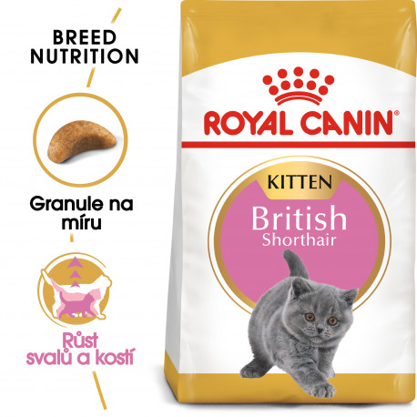 Royal canin Breed Kitten Feline British Shorthair 10kg