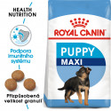 Royal Canin Maxi Puppy granule pro velká štěňata 1kg