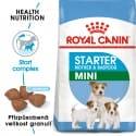 Royal Canin Mini Starter Mother&Babydog granule pro březí nebo kojící feny a štěňata 1kg