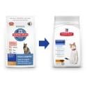 Hill's Feline Dry Senior 5kg