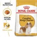 Royal Canin Cavalier King Charles Adult granule pro dospělého kavalír king charles španěl 500g