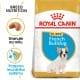 Royal canin Breed Fr. Buldoček Junior 3kg