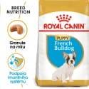 Royal Canin French Bulldog Puppy granule pro štěně francouzského buldočka 1kg