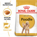 Royal Canin Poodle Adult granule pro dospělého pudla 500g
