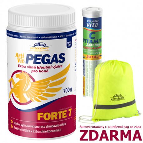 Nomaad ArtiVit Pegas Forte 7 prášek 700g