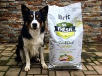 Granule z čerstvého masa: Brit Fresh
